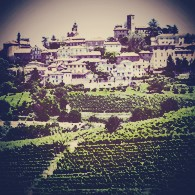 barbera-vinopio-be