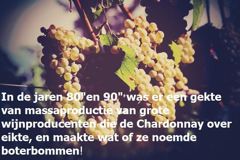 chardonnay-witte-wijn-jaren80-www-vinopio-be