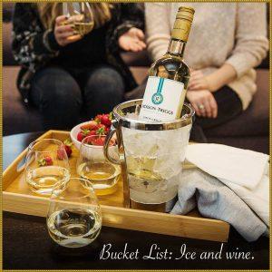 Ice wine ijswijn bucket list www.vinopio.be