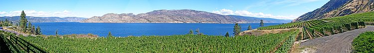 Okanagan_Greata_Vineyard Canada www.vinopio.be