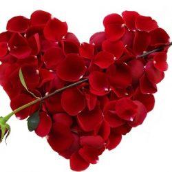 Spaanse San Valentín wijn voor Valentijns Dag