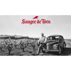 Torres San Valentín Semi Dry white Sangre de Toro www.vinopio.be